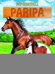 Napraforgó Papírmodell - Paripa