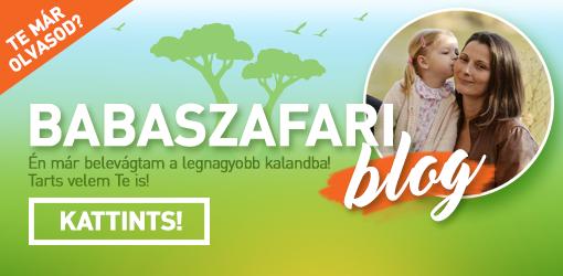 Babaszafari Blog