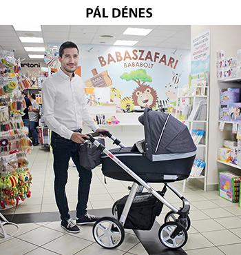 Pál Dénes